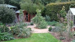 janets veg garden 2